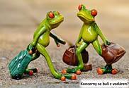 Žábáci se stěhují